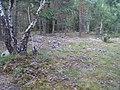 Hummelmoraberget, klapperstensvallar, 2015c.jpg