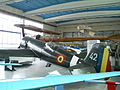 IAR 80 replica.jpg