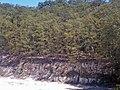 Il Bosco sovrastante le formazioni geologiche.jpg