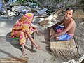 Images from Bali Island Sunderbans IMG 20171112 101928.jpg