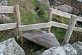 Improved Stile - geograph.org.uk - 851063.jpg