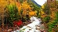 Indian Summer scenery on Cayoosh creek - panoramio.jpg