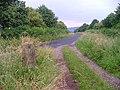Ingleby Avenue - geograph.org.uk - 26634.jpg