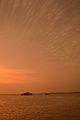 Inland RORO Cargo Ship Shapla-Shaluk 9 and Desi Boat - River Padma - Rajbari-Dhaka 2015-05-29 1399.JPG