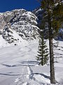 Into the Alps - P1020087 (100788205).jpg