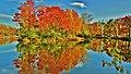 Irréel plein de couleurs... Unbelievable but true... - panoramio.jpg