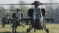 "Italian Army 5th Army Aviation Regiment ""Rigel"" A129 Mangusta attack helicopters.png"