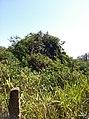Itupeva - SP - panoramio (1091).jpg