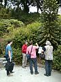 JC Conservatoire botanique national de Brest 06.jpg