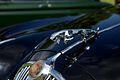 Jaguar (9604379206).jpg