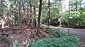 Jakobsbrunnen im Dämmerwald (Waldgebiet) in Schermbeck, Nordrhein-Westfalen.jpg
