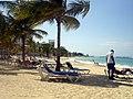 Jamaica - panoramio (23).jpg
