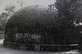 Jardin Botanique Cantonal Lausanne - IMAG3668-colour-adjusted.jpg