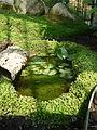 Jardin des plantes Paris Serre de l'histoire des plantes2.JPG