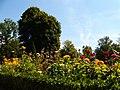 Jardin of Residenz, Würzburg, 22 Aug 2010 - panoramio - anagh (10).jpg