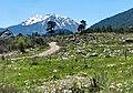Jeep safari Kemer - Gedelme - Ovachik - panoramio (20).jpg