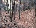 Jena 1999-01-17 32.jpg