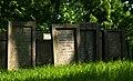 Jewish cemetery Lezajsk 4.jpg