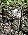 Jewish cemetery Zelechow IMGP3188.jpg