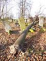 Jewish cemetery in Szydlowiec Poland 7.JPG