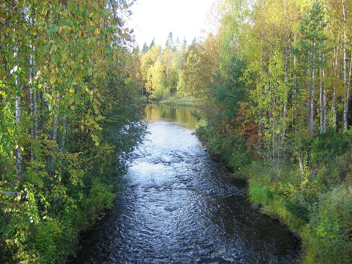 Jolosjoki
