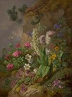 Joseph Schuster - Alpenblumen - 7802 - Kunsthistorisches Museum.jpg