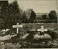 Joyce Kilmer's Grave in France.jpg