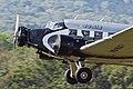 Ju-Air Junkers Ju-52-3m HB-HOS Hahnweide 2011 03.jpg