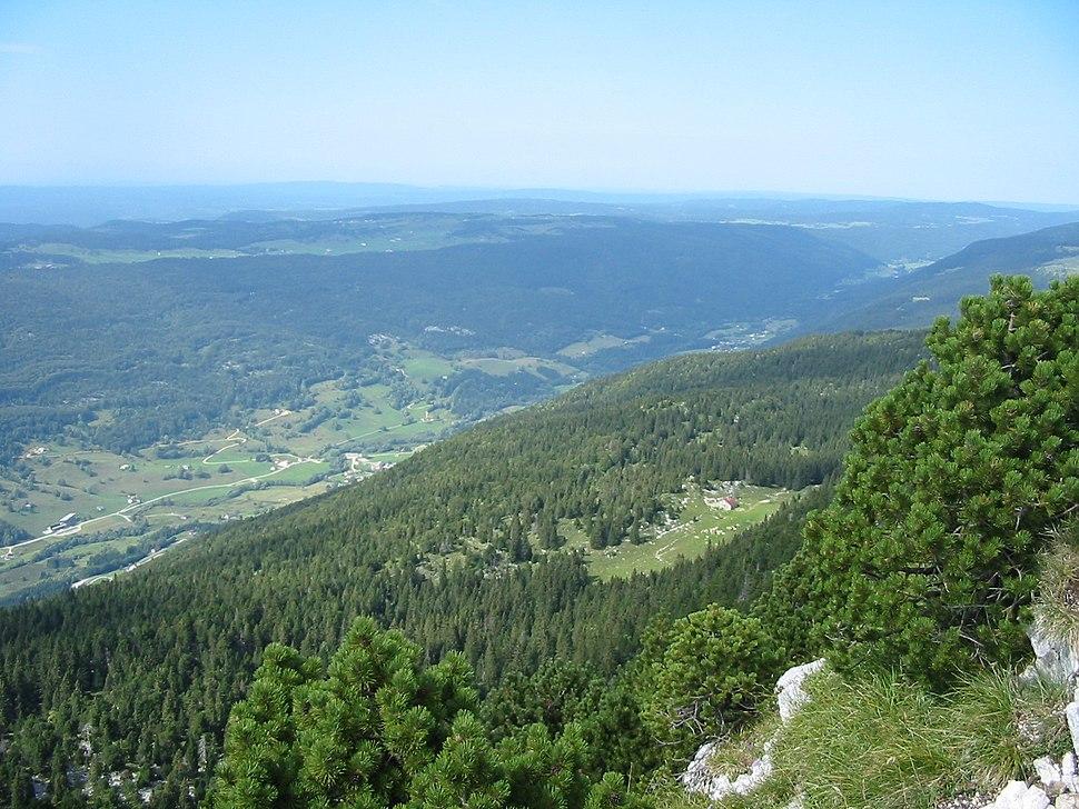 Landscape of tree-clad valley stretching toward mountainous horizon