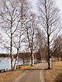 Jyväskylä - footpath3.jpg