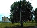 Kúpeľné mesto Turčianske Teplice 19 Slovakia2.jpg