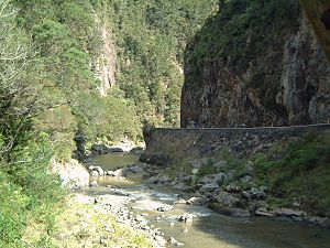 Karangahake Gorge - State Highway 2 through the gorge near Karangahake