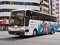 KM Kanko Bus 809 Tokyo One Piece Tower Advertise Aero Queen 1.jpg