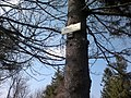 Kamenice 780m - panoramio (1).jpg