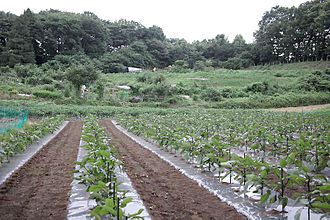 Keisen University - Educational Farm for Horticulture