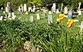 Kensal Green Cemetery 15042019 007 5780.jpg