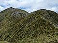 Kepler Track, New Zealand (50).JPG