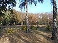 Khimselyshche, Cherkasy, Cherkas'ka oblast, Ukraine - panoramio (298).jpg