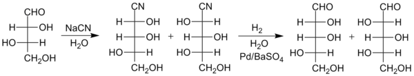 kiliani fischer synthesis of monosaccharides Monosaccharides are the most basic unit of carbohydrates, playing an essential role in the biochemistry of life the most important and commonly.