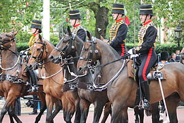 King's Troop, Royal Horse Artillery.JPG