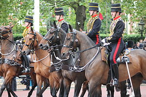 Royal Horse Artillery - The King's Troop, Royal Horse Artillery at Trooping the Colour, in 2012