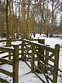 Kissing gate. - geograph.org.uk - 1718727.jpg