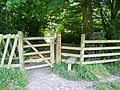 Kissing gate and stile, Dinton Park - geograph.org.uk - 865470.jpg