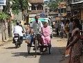 KolkataVanCrop.JPG