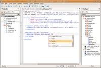 Komodo Edit.png