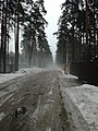 Kozlova , vsevolozhsk.jpg