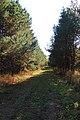 Krasnoobsk, Novosibirskaya oblast', Russia - panoramio (18).jpg