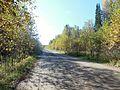 Kungursky District, Perm Krai, Russia - panoramio (165).jpg