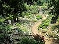 Kunming Botanical Garden - DSC03136.JPG
