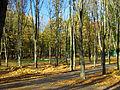 Kyiv Internatsionalny Park13.JPG